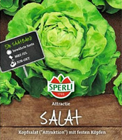 Kopfsalat (Saatband) Sorte: Attractie/Attraktion von Sperli
